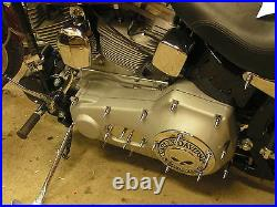 HARLEY CHROME SPIKE ENGINE COVER BOLT KIT big twin cam evo softail dresser fxr